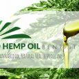 CBD hemp oils